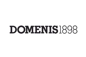 Domenis-logo