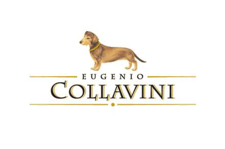 logo_collavini