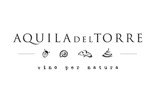 Acquila-del-torre-logo