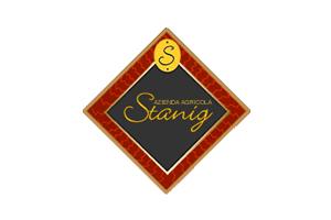 Stanig-logo